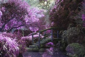 giardino dell'amare