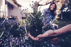 Diventare una famiglia ecologica