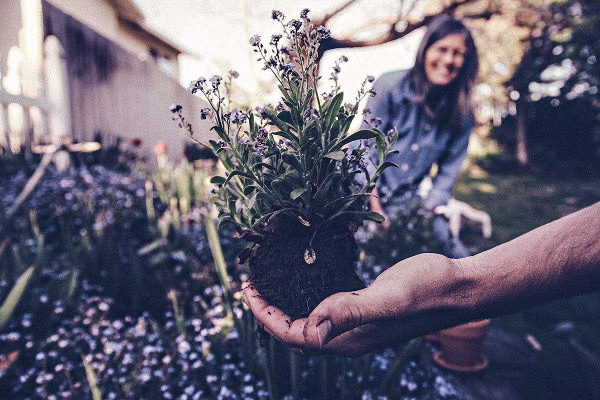 Diventare una famiglia ecologica: ecco i trucchi!