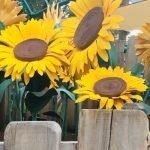 foto allestimento fiori