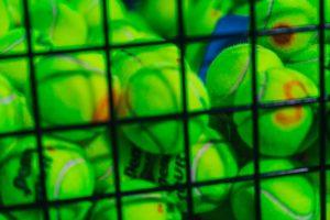 Più di 700 palline da tennis